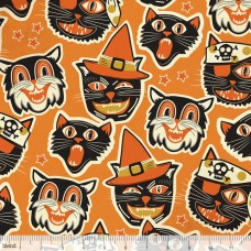 Cat-tastic - orange